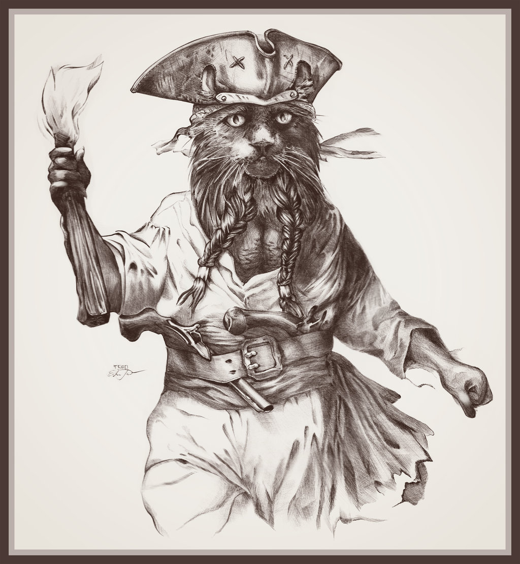 catbeard_the_pirate_by_tsaoshin-d4na930